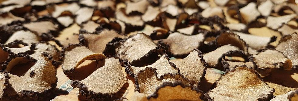 Sun Dried Black Truffles (Aestivum & Uncinatum vitt.) 50gr.