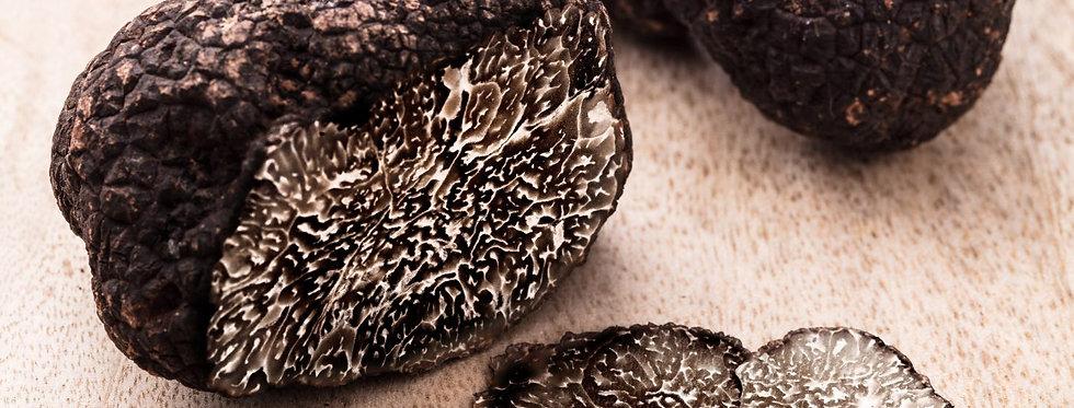 FRESH BLACK PERIGORD TRUFFLES MELANOSPORUM EXTRA-GRADE