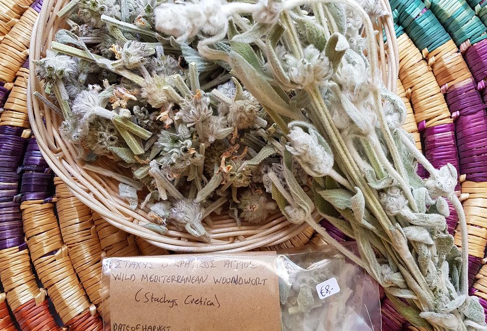 Wild Mediterranean Woundwort (Stachys Cretica) 20gr.