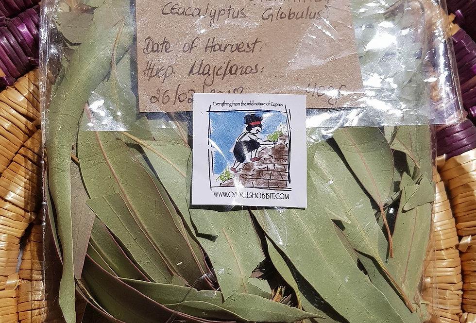 Wild Eucalyptus Leaves dry (Eucalyptus globulus) 20gr.