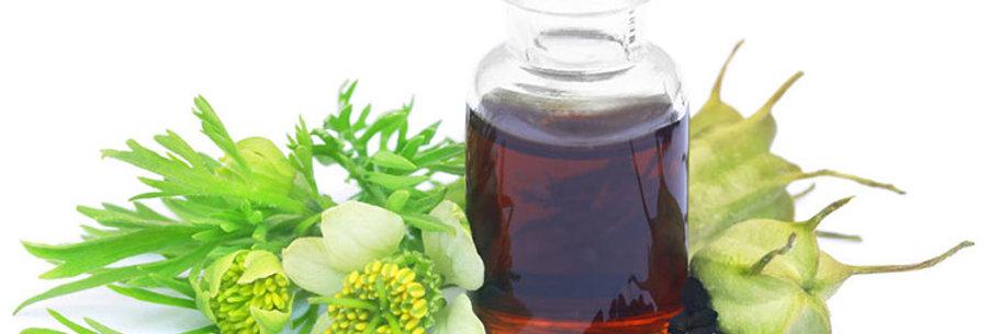 Organic Cold Pressed Black Cumin Seed Oil (Nigella sativa) 100ml