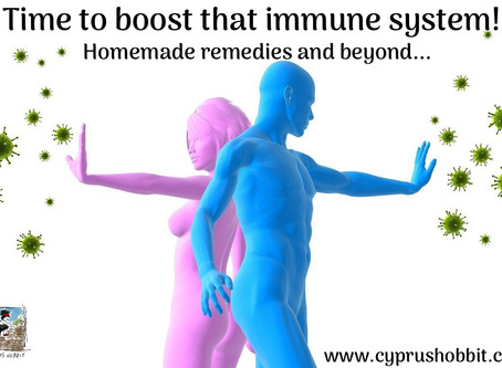 Time to boost the immune system!  Homemade remedies and beyond...