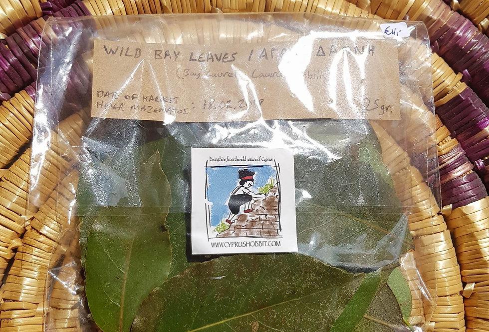 Bay Leaves (Bay laurel - Laurus nobilis) 20gr.
