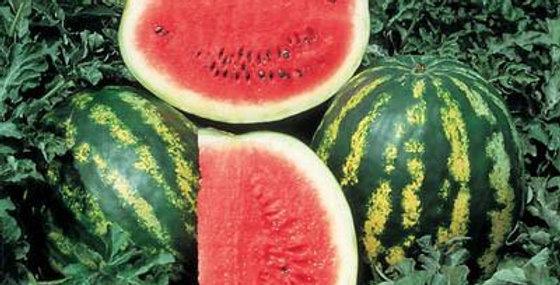 Cypriot Watermelon/Crimson Sweet Seeds (Citrullus lanatus)