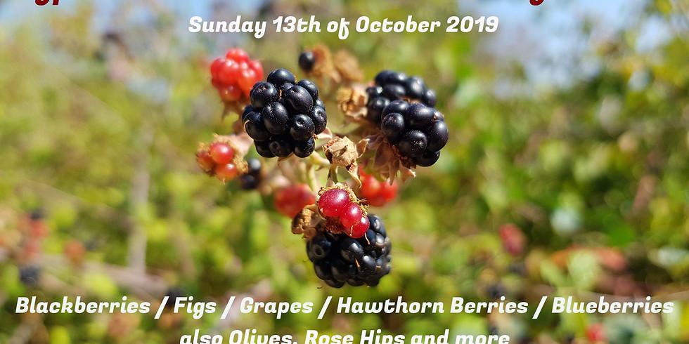 Cyprus Hobbit Tour #004 - Fruity Edition