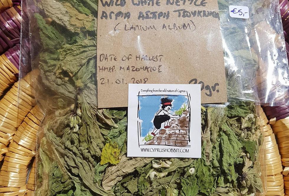 Wild White Nettle (Lamium album) 20gr.