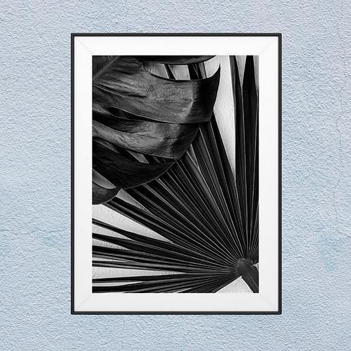Black Plant Framed Wall Art