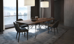 MIKADO TABLE AND CINDY CHAIRS