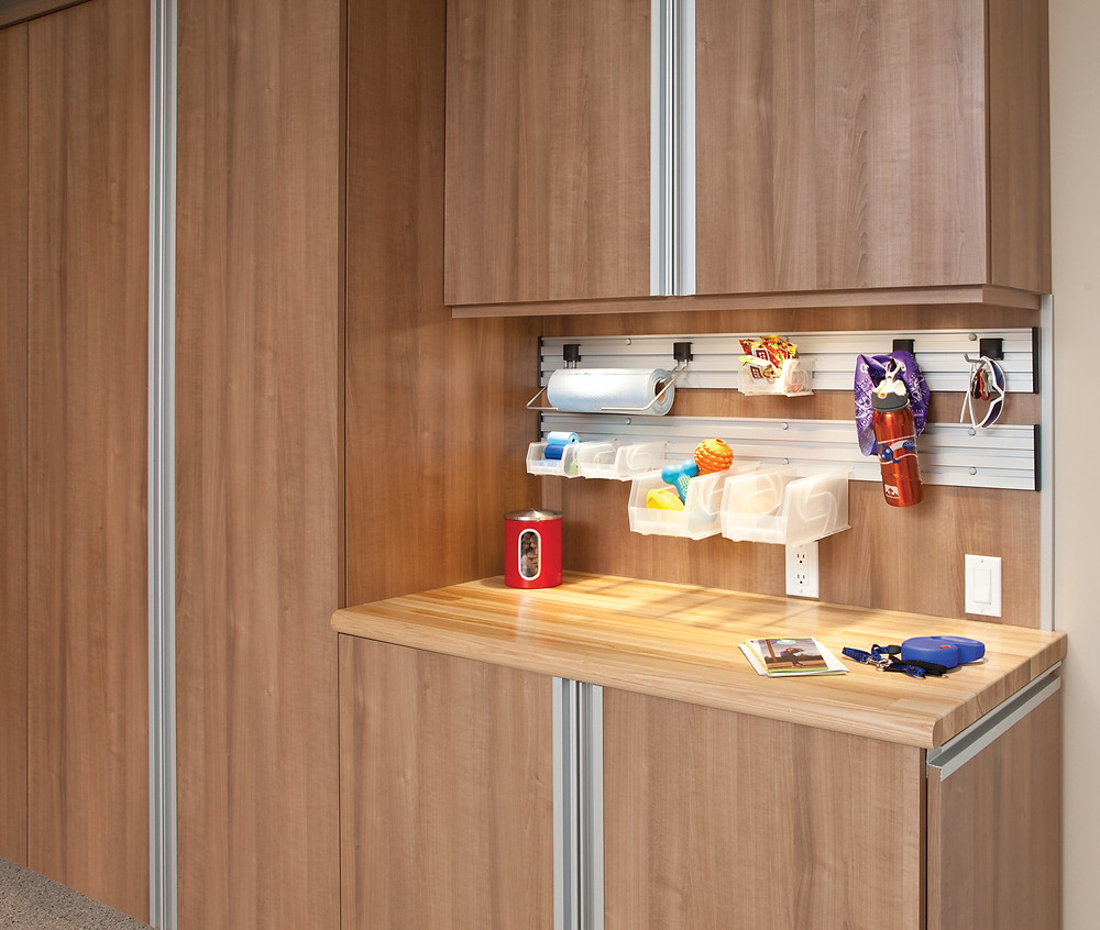 Frequently Used Items, Garage Storage Cabinet