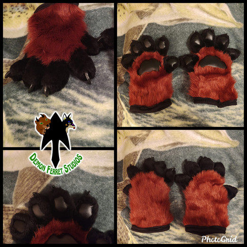 Red Lion Paws
