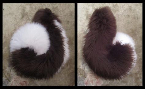 Husky Tail