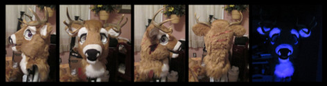 Kanati the Whitetail Deer