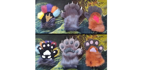 paw lineup.png
