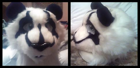 Da-Xia the Panda