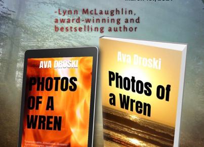 Photos of a Wren