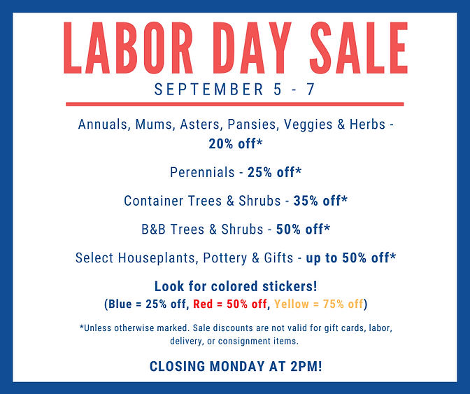 labor day sale 2020 (2).png