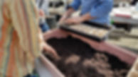 marina dirt.jpg
