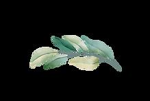leaf-03.png