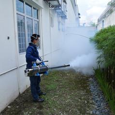 Pest Control Service in Singapore