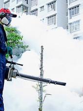mosquito-pest-control.jpg