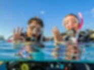 open-water-diver_0.jpg