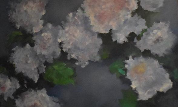 Moonlit Hydrangeas   48x48