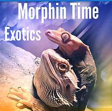 morphin time.jpg