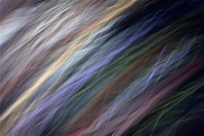 Grass Waves III