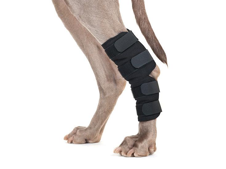Dog Hock Brace
