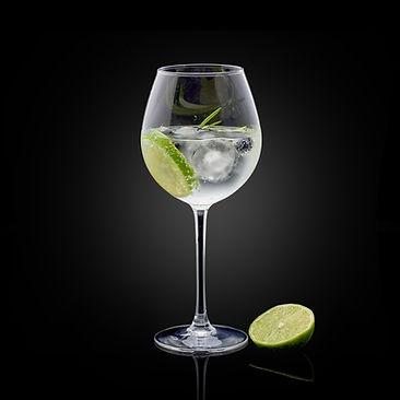 gin tonic_barman