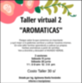 Taller 2 (Aromaticas).png