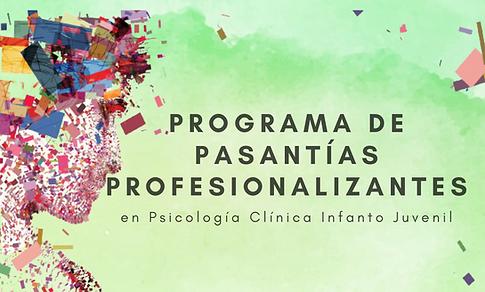 Programa de pasantías profesionalizantes