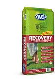viano recovery 8-6-13.jpg