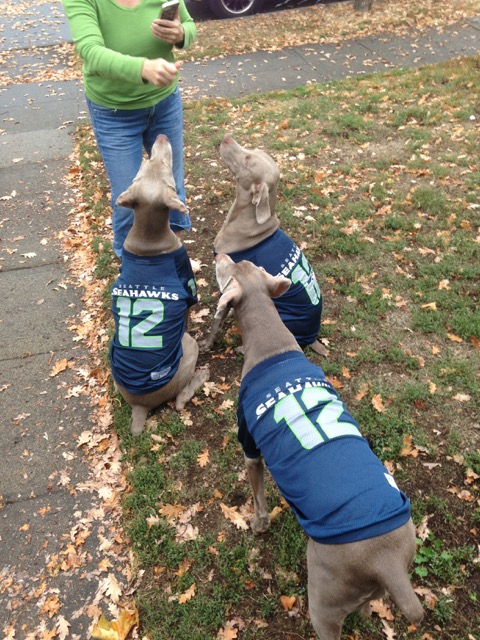 seahawks_weims