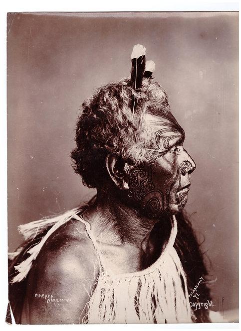 Rare Elizabeth Pullman Albumen Print Photograph 'Pineaha Warekohai' Circa 1865