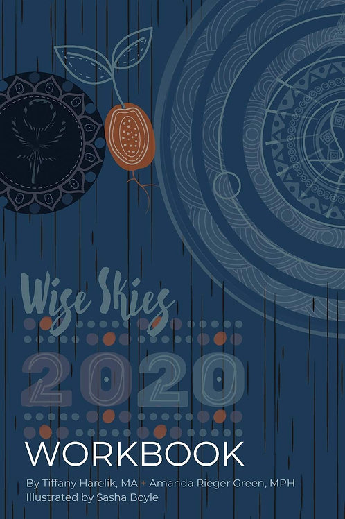 2020 Wise Skies Workbook