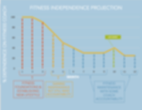 Fitnes Independence Projection