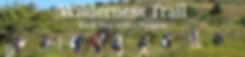 Screen Shot 2020-06-20 at 11.25.56 PM.pn