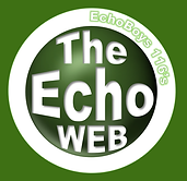 TheEchoWEBロゴtrim.png