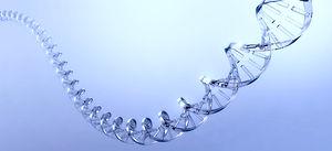 DNA Strand_edited.jpg
