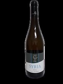 Syria_borgognotta bianco calabrese