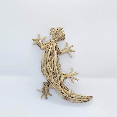 Driftwood Gecko