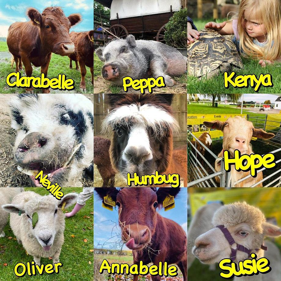 ians mobile farm animals 2.jpg