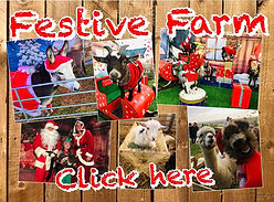 festive farm ians mobile farm.jpg