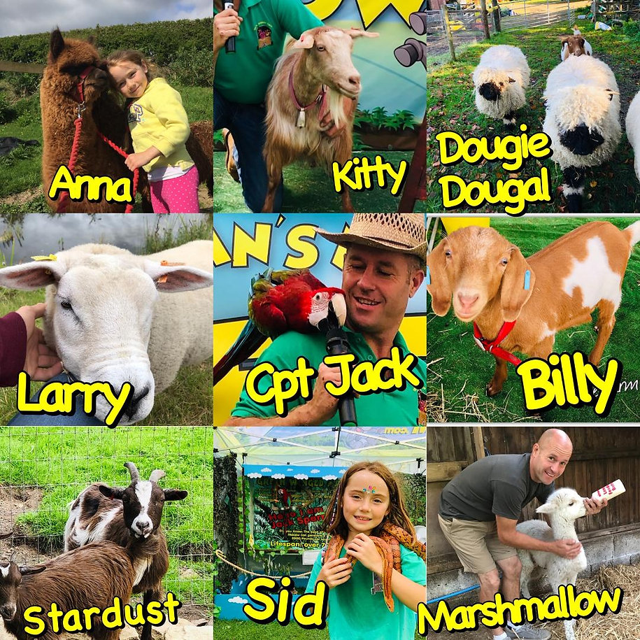 mobile farm animals.jpg