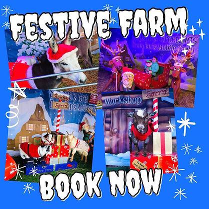 festive farm ians moble farm.jpg