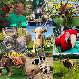 nanny goat farm 3df.jpg