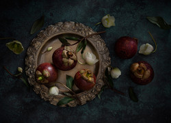 Folio_Food2337