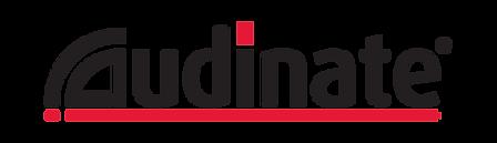 Website Logos_14 Audinate.png