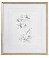floral-sketch-1a.jpg